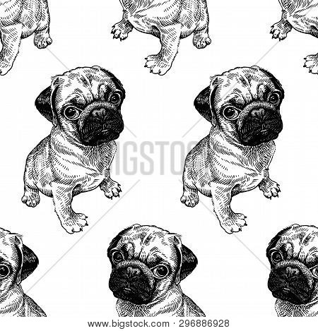 Seamless Pattern With Cute Puppies. Home Pets Isolated On White Background. Sketch. Vector Illustrat