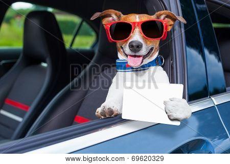 фото при вылезание из машины