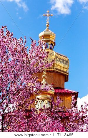 Kriviy Rih Ukraine April 22 2015. Golden domes of Orthodox churches and purple blossoming magnolia tree. Focus pn a tree. ** Note: Shallow depth of field stock photo