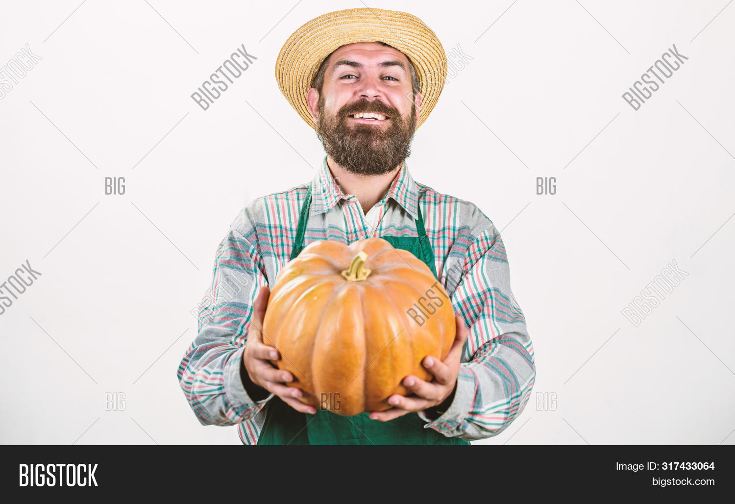 agronomy,autumn,beard,bearded,brutal,caucasian,chef,crop,detox,dieting,digital,earth,easter,factory,farm,farmer,farming,female,fertilizer,festival,field,food,fruit,garden,halloween,hand,happy,harvest,healthcare,hipster,man,market,mature,moustache,mustache,natural,organic,person,raw,restaurant,rich,rural,seasonal,spinach,technology,unshaven,useful,vegetable,vitamin