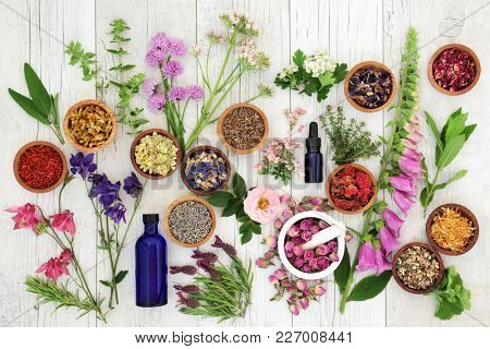 Natural herbal medicine selection with herbs and flowers in wooden bowls and loose, glass aromathera