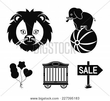 Elephant on the ball, circus trailer, circus lion, balls.Circus set collection icons in black style vector symbol stock illustration . stock photo