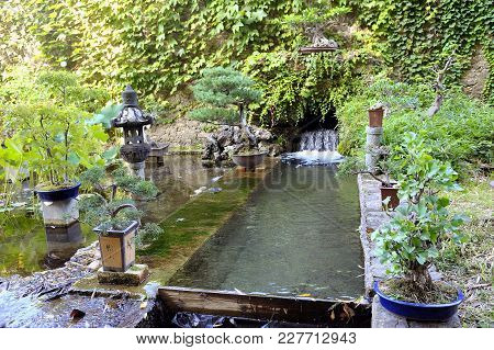 Japanese garden in the Anduze bamboo plantation in the French department of Gard stock photo