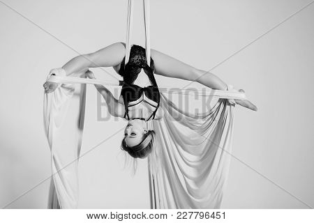 Nice aerialist hanging head foremost on silk tissues. stock photo