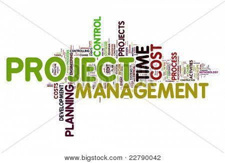 Project management concept in word tag cloud stock photo
