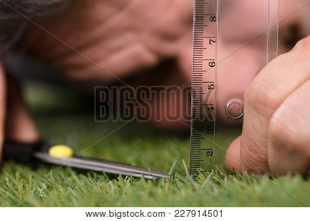 Close-up Of A Man Using Measuring Scale While Cutting Grass With Scissors stock photo