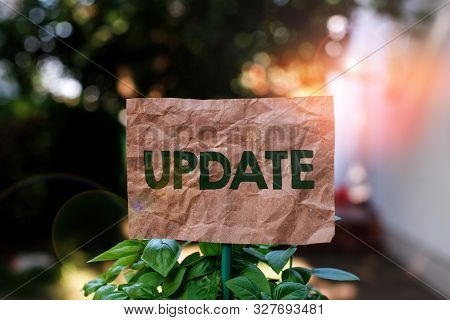 Word writing text UPDATE. Business concept for make something more modern or up to date like software program Plain empty paper attached to a stick and placed in the green leafy plants. stock photo