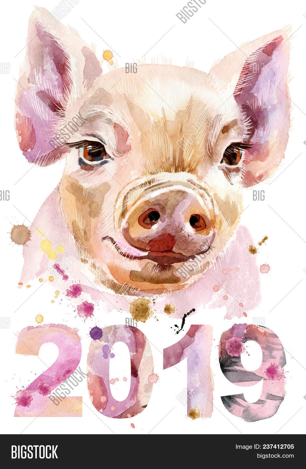 Cute piggy. Pig for T-shirt graphics. Watercolor pink mini pig illustration. New year 2019