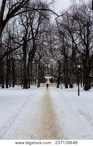 Long Telephoto View Of Man Walking Along Snowy Road In A Park In Warsaw, Poland, Trees Without Leave