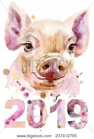 Cute piggy. Pig for T-shirt graphics. Watercolor pink mini pig illustration. New year 2019 stock photo