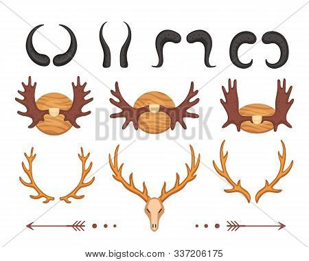 Different vector horns , deer skull and moose horny hunting trophy. Antler, antelope, goat, deers and elk animal horn. stock photo