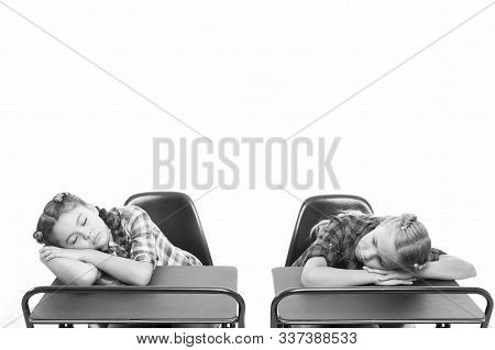 Surviving a boring lesson. Cute school children sleeping at school desks. Little schoolgirls got tired at lesson in primary school. Small girls doing a nap during lesson. Most boring lesson ever. stock photo