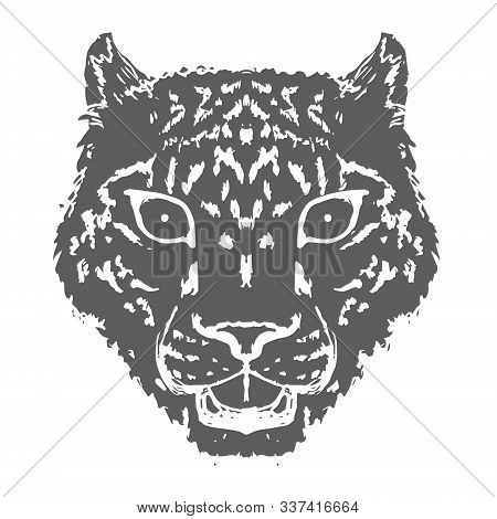 Snow Leopard Roar face or head. Hand drawn Leopard Head animal or predator isolated on white background. Vector stock photo