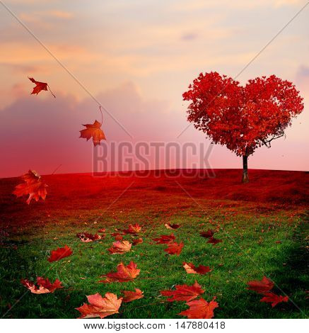 Tree of love in autumn. Red heart shaped tree at sunset.Autumn season concept.Beautiful landscape wi