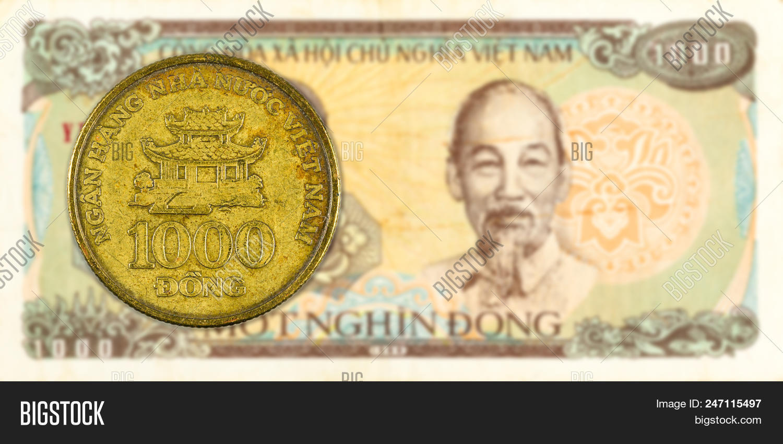 Vietnamese Dong Bank Note Obverse