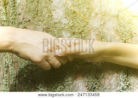 Helping hand outstretched for salvation, nature protection. stock photo