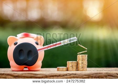 Sick piggy bank use thermometer check  a fever and a Injury with bandage and blood and stack gold coin put on the wood on sunlight in the public park, saving money for buy health insurance concept. stock photo