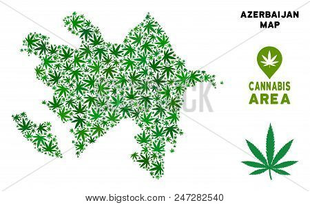 Ganja Azerbaijan map collage of marijuana leaves. Narcotic dependence concept. Vector Azerbaijan map is shaped of green ganja leaves. Abstract territory plan in green color variations. stock photo