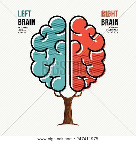 Concept illustration of human brain hemispheres with information about left and right brains in modern flat line art style. EPS10 vector. stock photo
