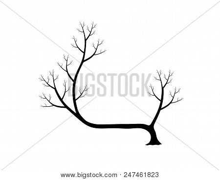 Dry tree silhouette isolated on white background. Black and white. vector illustration. stock photo
