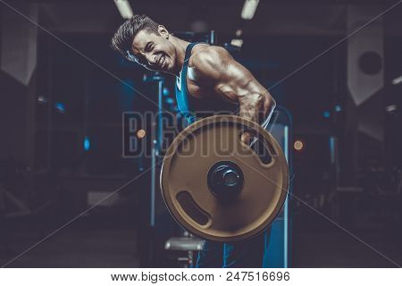 Handsome young fit muscular caucasian man of model appearance workout training in the gym gaining weight pumping up muscles and poses fitness and bodybuilding sport concept stock photo