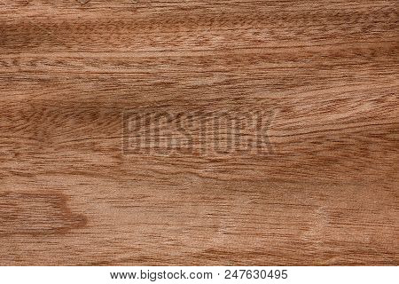 Superlative brown veneer background for your project. High resolution photo. stock photo