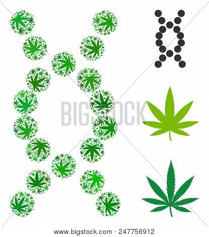 Genome mosaic of weed leaves in different sizes and green variations. Vector flat cannabis leaves are organized into genome mosaic. Drugs vector design concept. stock photo