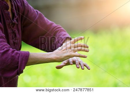 Practice of Tai Chi Chuan in outdoor. Detail of hand positions stock photo
