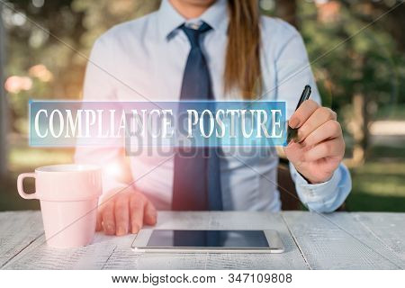 Conceptual hand writing showing Compliance Posture. Business photo showcasing analysisage the defense of enterprise and assure resources Female business person sitting and holding mobile phone. stock photo