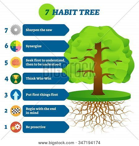 7 habit tree success mindset stages vector illustration. Be proactive, begin with the end in mind, put first things first, win-win, first understand, then be understood, synergize and sharpen the saw. stock photo