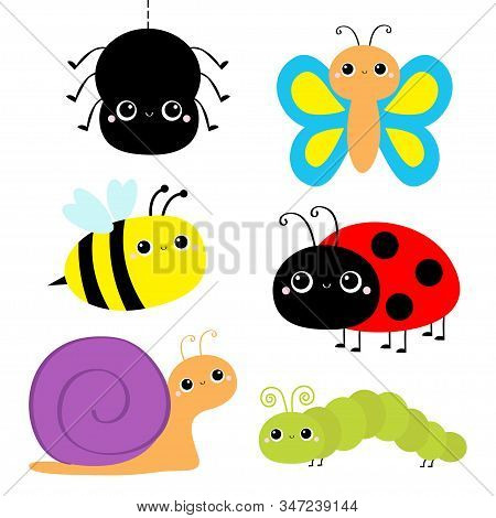Insect set. Ladybug ladybird, green caterpillar, butterfly, spider, honey bee, snail. Cute cartoon kawaii baby animal character. Flat design. White background Isolated. Vector illustration stock photo