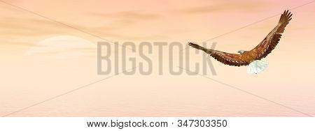 Bald eagle flying to the sun - 3D render stock photo
