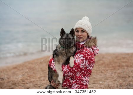 Beautiful girl owner with her dog breed Keeshond playing on the beach. Concept: friendship between the owner and the dog, good relations. Active lifestyle. Protection of animals. stock photo