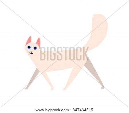 Funny cartoon fluffy cat angora vector flat illustration. Cute domestic animal with blue eyes and furry tail isolated on white. White longhair pet character stock photo