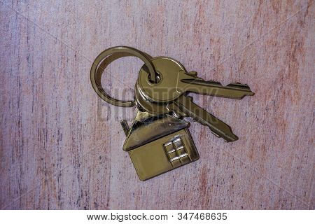 Two keys and a house-shaped keychain on the brown table stock photo