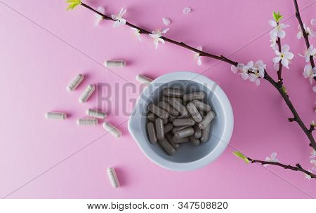 Gray capsules in a medical mortar and flowering apricot branch on a pink background stock photo