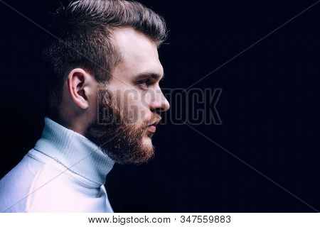 Man bearded macho close up face. Barbershop concept. Beard grooming. Hipster style beard. Handsome bearded guy. Masculinity and beauty. Well groomed bearded man stylish appearance. Hairstyle barber. stock photo