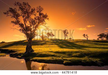 Un paysage rural de adelaide hills