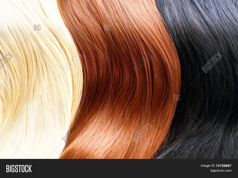 Hair Colors Palette Different Hair Colours Hair Texture Blonde