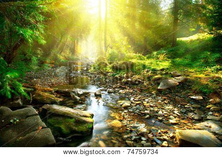 Mountain River with, forest landscape. Tranquil waterfall scenery in the middle of green forest