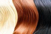 Hair Colors Palette. Diverse Hair hues Hair Texture. Blonde, cocoa and dark hair hues
