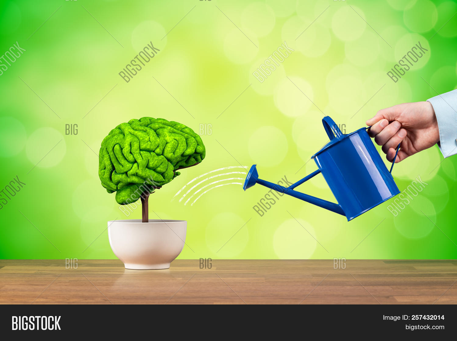 Creativity Growth, Better Using Brain Function And Memory Improvement Concept. Creativity Growth Rep