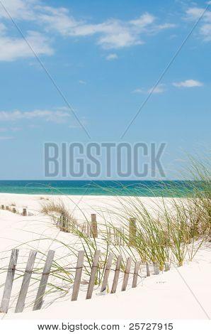 sand dune on Perdido Key, Florida-Dishwasher Magnet Skin (size 24x24)