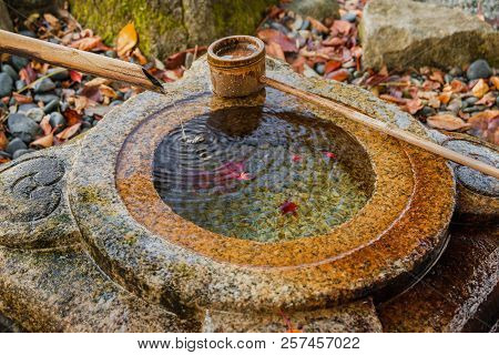 Old stone chozubachi for ritual ablution in Japan, with bamboo ladle and autumn red maple leaves inside stock photo