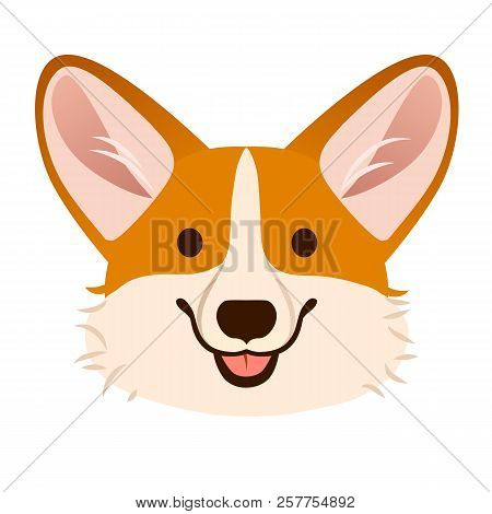 Corgi dog cute cartoon vector portrait.  Pembroke Welsh corgi puppy dog face, smiling with tongue out isolated on white. Pets, canine, dog lovers theme design element, flat contemporary style. stock photo