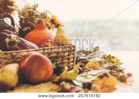 Hello Autumn. Pumpkin And Vegetables In Basket And Colorful Leaves With Acorns And Nuts On Wooden Ta
