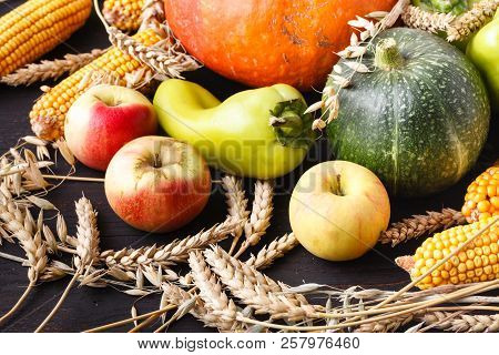 Thanksgiving Day concept - border or frame with orange pumpkins and colourful leaves on wooden background stock photo