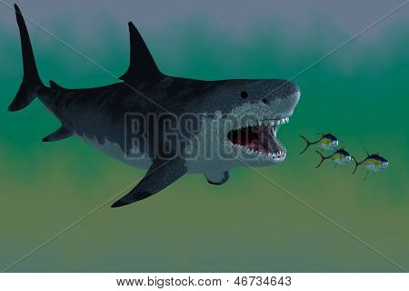 Several Tuna fish try to escape from a huge Megalodon shark in prehistoric times. stock photo
