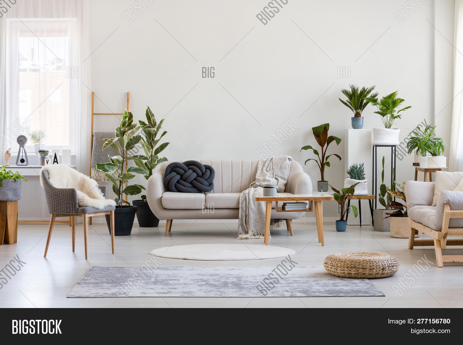 Urban,apartment,bright,chair,coffee,comfortable,condo,contemporary,copy,couch,cozy,design,elegant,empty,estate,fashionable,flat,floor,flower,furniture,green,grey,home,house,interior,jungle,knot,ladder,leaf,living,luxury,modern,pillow,plant,pot,relax,room,rug,scandinavian,settee,simple,sofa,space,style,stylish,table,trendy,wall,white,wooden