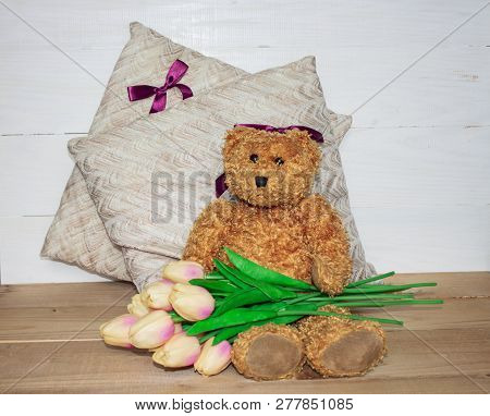 Flower in garden at sunny summer or spring day. Flower for postcard beauty decoration and agriculture concept design. Beautiful flower in tropical garden. Colorful flower. flower pattern. flower background. flower bouquet. tulips on the pillow. teddy bear stock photo